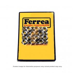 FERREA RETAINERS (TITANIUM) - NISSAN GTR R35 (2009 - 2010)