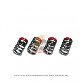 TOMEI HIGH PERFORMANCE VALVE SPRING SET SUBARU EJ20 & EJ25 MODELS